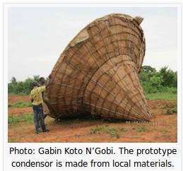 kotoNgobi