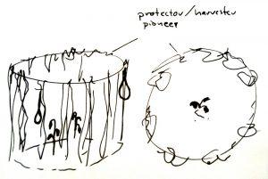 sk_protectorPlant